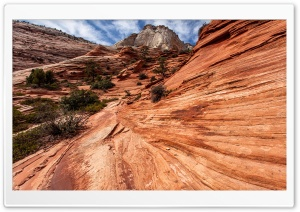 Zion National Park, Utah HD Wide Wallpaper for Widescreen